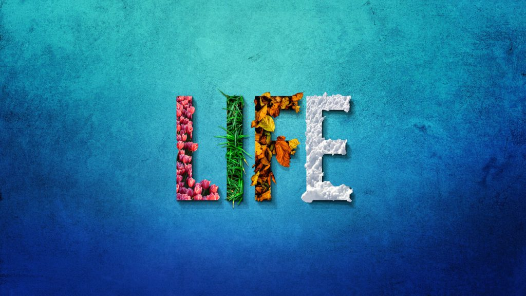 Four Seasons - Word Life
