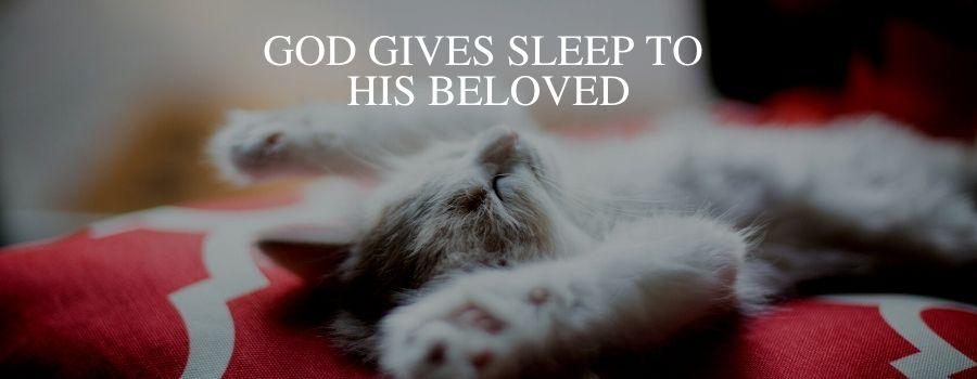 God Gives Sleep to his Beloved – Kitten Sleeping