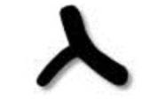 Hebrew Letter Gimel - Pictograph