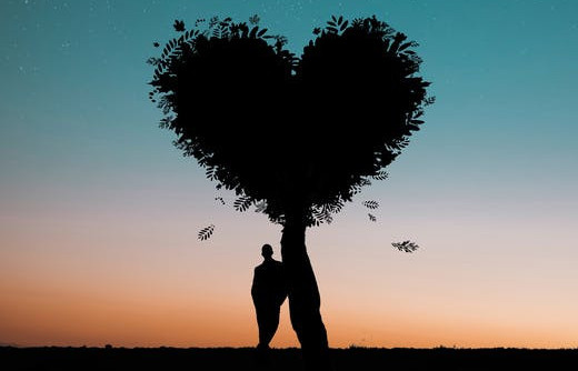 Man Under Heart Tree