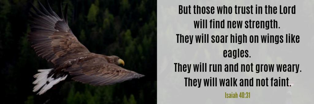 On Wings Like Eagles Isaiah 40 31