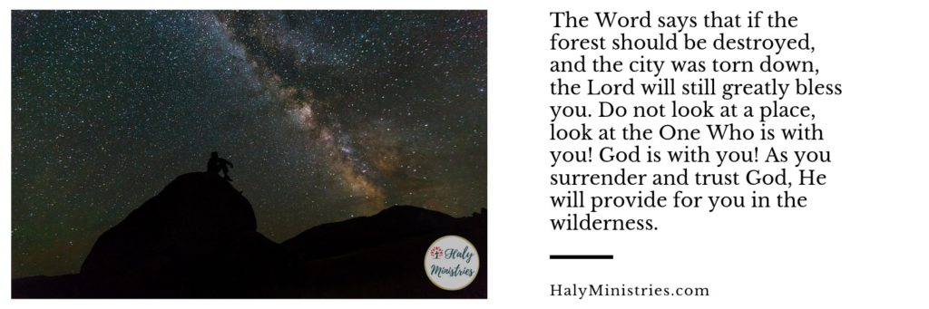 Prophetic Word - God Can Bless You Even in the Wilderness - Haly Ministries - header
