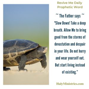 Revive Me Daily Prophetic Word - Slow Down