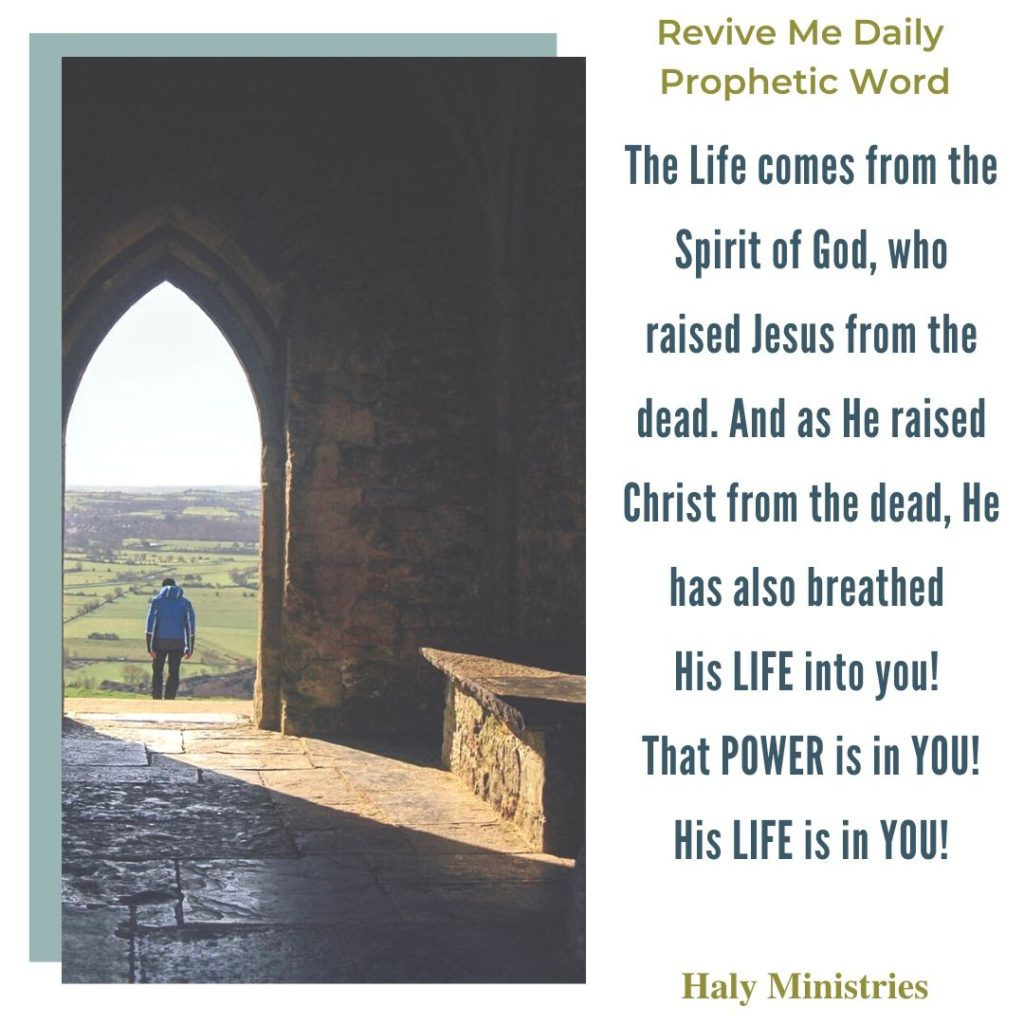 Revive Me Daily Prophetic Word - The Life comes from the Spirit of God