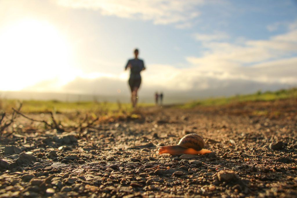 Trailrun - Runners and Snail